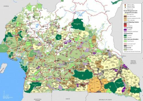 FCfa 2.4 billion to improve the management of forested areas in Cameroon