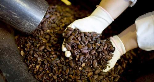http://www.businessincameroon.com/images/news/1603-6065-atlantic-group-wants-to-build-a-cocoa-processing-plant-in-cameroon_L.jpg