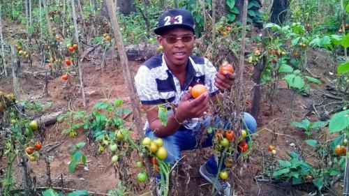 FCfa one billion to set up young Cameroonian farmers in 2017