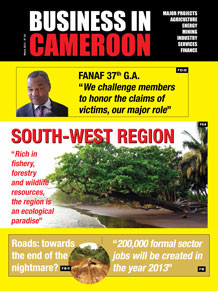 Business in Cameroon n°2