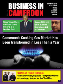 Business in Cameroon n°4