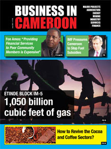 Business in Cameroon n°5