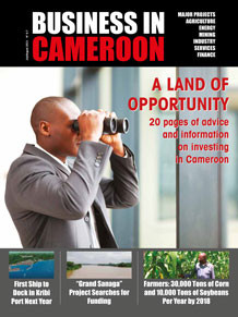 Business in Cameroon n°6