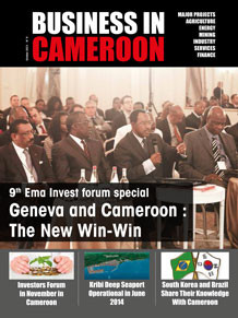 Business in Cameroon n°9