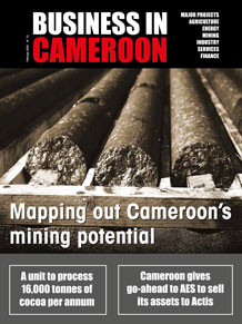 Business in Cameroon n°13