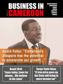 Business in Cameroon n°15