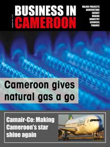 Business in Cameroon n°18