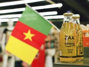 568-products-made-in-cameroon-were-eligible-for-cemac-s-preferential-tariff-regime-in-the-last-4-years