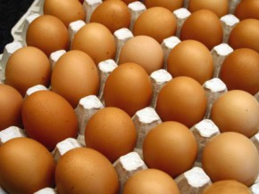 insecurity-in-extreme-north-and-at-the-border-with-the-central-african-republic-creates-an-increase-in-egg-supply-to-cameroon