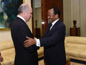 """laurent-fabius-""""i-would-like-to-pay-homage-to-cameroon's-bravery-in-the-fight-against-boko-haram"""""""