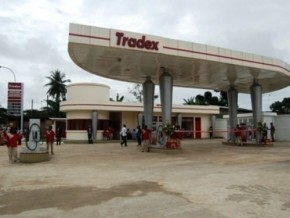 "tradex-claims-creation-of-""a-thousand-jobs""-in-cameroon-in-8-years"