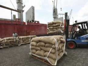 cameroon-cocoa-exports-have-increased-by-34000-tonnes-in-the-first-eight-months-of-the-season