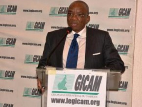 cameroon-gicam-fears-a-planned-asphyxia-of-private-companies-in-2018