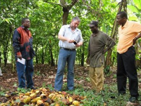 telcar-cocoa-to-train-10000-new-producers-of-certified-cocoa-in-2016
