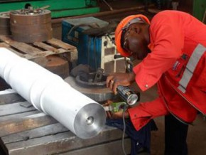 seven-new-industrial-projects-will-benefit-from-the-law-on-promoting-private-investment-in-cameroon