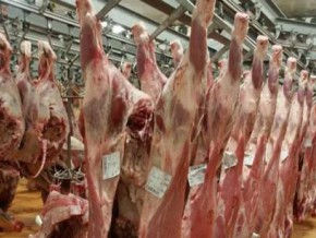 cameroon-modern-slaughterhouse-and-cold-storage-warehouse-of-1-400-m3-will-be-commissioned-in-ngaoundere-in-august-2017