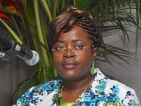 cameroonian-government-orders-study-on-telecoms-and-ict-statistics