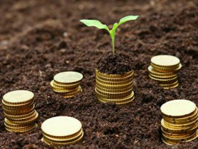 the-chamber-of-agriculture-of-cameroon-has-already-collected-fcfa-300-million-to-create-its-microfinance-institution