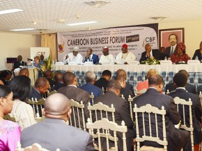 cameroon-business-forum-wants-president's-office-to-process-cases-more-quickly
