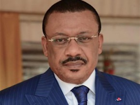 cameroon-initiates-its-first-national-survey-on-access-to-energy