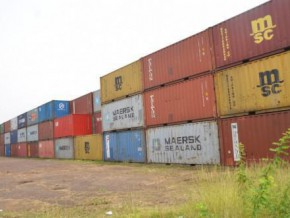 cameroon-customs-will-sell-loads-of-wood-abandoned-since-years-at-douala-port
