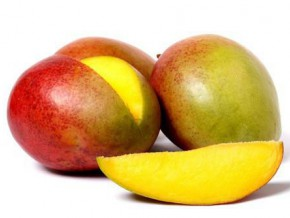 israel-and-germany-want-to-boost-production-and-improve-mango-sales-in-cameroon