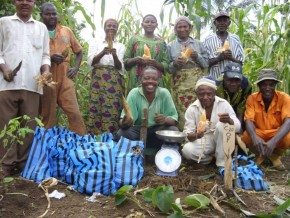 equipment-to-boost-production-of-maize-seedlings