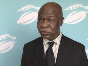 cameroon-may-double-its-cocoa-production-via-whole-crop-processing