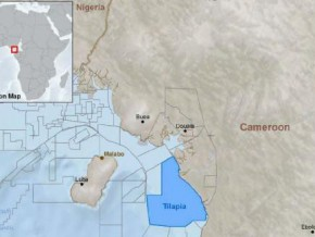 oil-and-gas-company-woodside-joins-noble-energy-and-glencore-in-tilapia-offshore-production-sharing-contract-in-cameroon