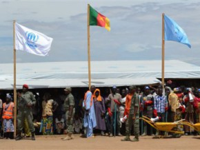cameroon-and-the-united-nations-seek-fcfa-170-billion-to-manage-the-refugee-victims-of-conflicts