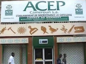 between-2012-and-2016-acep-cameroon-grants-loans-of-fcfa-8-5-billion-to-rural-entrepreneurs