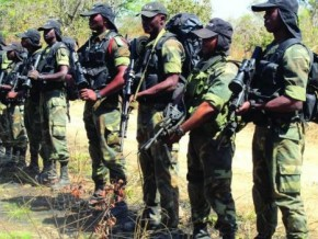 20-poachers-armed-with-machine-guns-in-drag-net