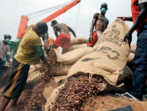 cameroonian-cocoa-exports-up-by-19-despite-difficulties-at-the-port-of-douala
