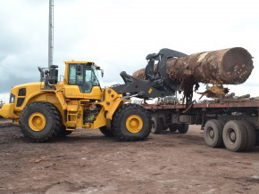 over-2-billion-fcfa-in-investments-to-ease-congestion-at-the-douala-lumber-yard