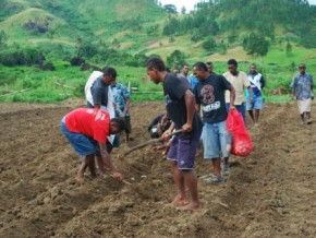cameroonian-parliamentarians-on-the-ground-to-promote-farming-among-youth