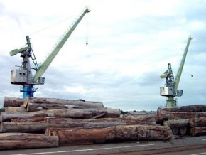 deliveries-to-the-wood-terminal-in-the-douala-port-increased-by-2-4-during-the-first-half-of-2016