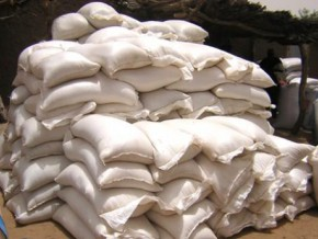 110-tons-of-fraudulently-imported-sugar-seized-in-cameroonian-capital