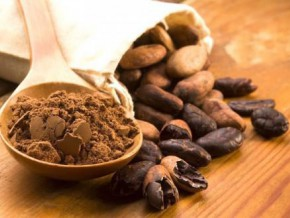 cameroon-inaugurated-its-first-three-post-harvest-cocoa-processing-centers-of-excellence