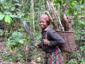 cameroon-committed-to-restoring-12-million-hectares-of-cleared-forests-by-2030