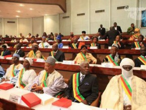 new-mining-code-submitted-for-approval-to-cameroonian-parliamentarians