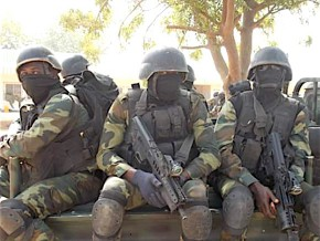 cameroonian-army-liberates-150-nigerian-boko-haram-hostages-in-the-town-of-ngoshe