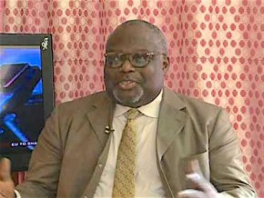 cameroonian-hope-sona-ebai-vies-for-the-position-of-executive-director-of-icco-the-world-cocoa-organisation