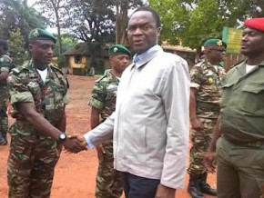 contingent-of-750-cameroonian-soldiers-on-the-way-to-central-africa-republic-with-increased-allowances