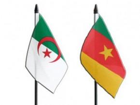 algerian-companies-lead-a-charm-offensive-on-cameroon's-market