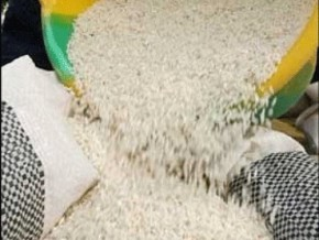 the-government-and-importers-agree-not-to-increase-the-price-of-rice-on-the-cameroonian-market