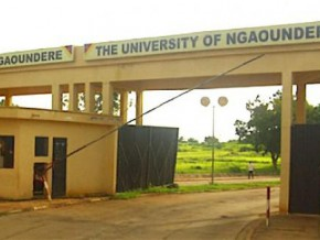 ngaoundere-university-studies-water-resource-and-quality-in-yaounde