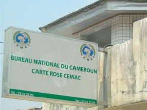 in-2013-2015-the-carte-rose-enabled-cemac-insurers-to-pay-cross-border-damages-worth-fcfa-382-million
