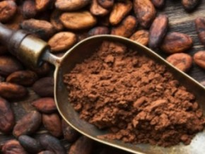 cameroonian-cocoa-is-the-least-sold-of-the-four-top-producing-countries