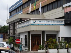douala-stock-exchange-may-share-facilities-with-future-cameroon-commodities-exchange