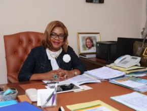 cameroon-allocates-resources-from-credit-foncier-and-fonds-des-telecoms-to-the-funding-of-agence-de-promotion-des-investissements